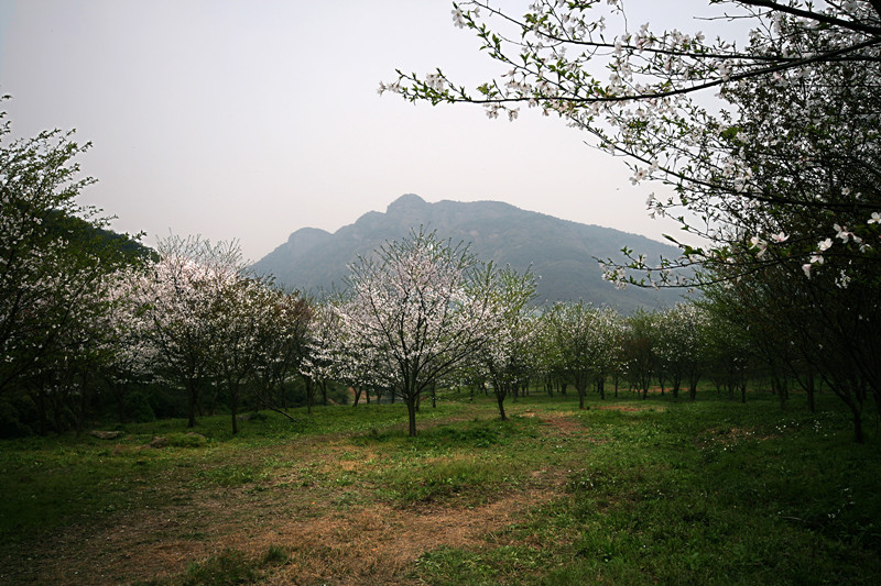 绍兴会稽山风景区
